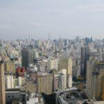 São Paulo Co Warto Zobaczyć