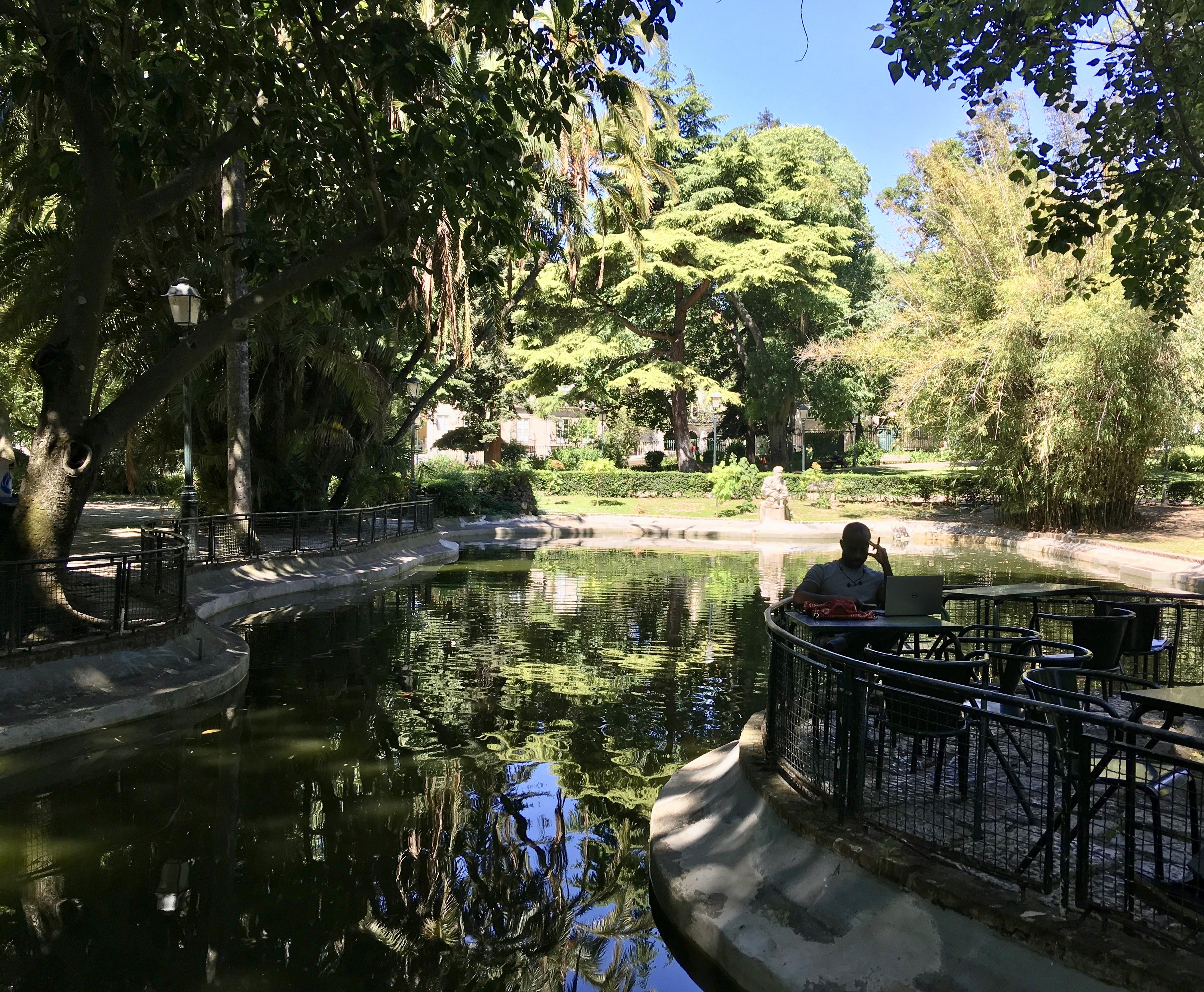 Jardim da Estrela – Najpiękniejsze ogrody Lizbony